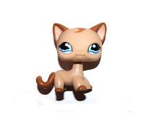 Littlest Pet Shop Blue Eyes Brown Hair Tan Short Hair Siamese Cat Figure Toy