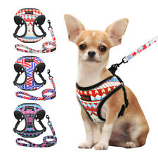 Reflective Dog Harness and Leash Mesh Padded Pet Puppy Walking Vest Adjustable