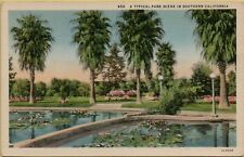 A Typical Park Scene in Southern Lilies Pond Trees California CA Postcard A20