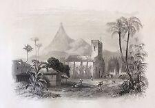 Les Pamplemousses Ile Colombie lithographie 1857 par Rouargue XIXe Columbia