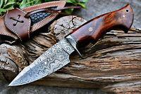 "10"" Amazing Custom Handmade Damascus Steel Hunting Knife & Rose wood handle"