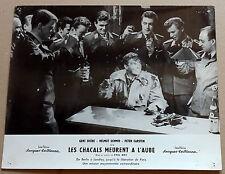 """1 PHOTO DU FILM """"LES CHACALS MEURENT A L'AUBE"""" Allemagne 1961"""