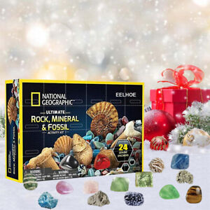 Mega Fossil Dig Kit Christmas Advent Calendar Mineral Gift Box Countdown Toy