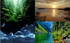 GUIDED MEDITATION CD VISIT A RAINFOREST, BEACH AT DAWN, NIGHT SKY, THE RIVER