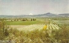 Vintage Chrome Union Oil PC Rogue River Valley Oregon ca. 1950 DB / up