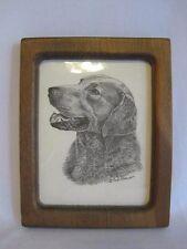 Earl Sherwan Labrador Dog Framed Picture Pencil Drawing