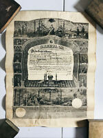 1900 Mason Masonic Blank Charter Decree Form Poster Lodge NICE