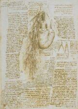"""LEONARDO da VINCI """"Heart and Bronchial"""" Anatomy 250gsm Reproduction A3 Poster"""