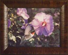 HUMMIN' ALONG by Russell Cobane FRAMED PRINT PICTURE 12x15 Hummingbird Flowers