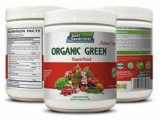 Chlorella Cracked Powder - Organic Greens Powder Berry 9.7oz - Superfoods 1C