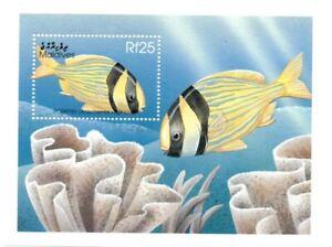 VINTAGE CLASSICS - Maldives 2342 - Porkfish - S/S - MNH