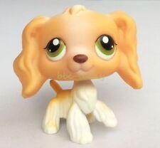 Hasbro Littlest Pet Shop LPS Loose Toys Orange White Cocker Dog Green Eyes Rare