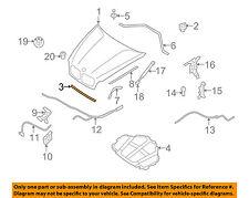 BMW OEM 07-13 X5 Hood-Front Seal Gasket 51767148342