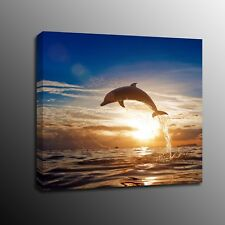 Jumping Dolphin Home Decor Canvas Print Wall Art Painting Picture