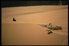 611049 Shepherdess Monument Valley Tribal Park Painted Desert A4 Photo Print