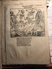 Original Totentanz der Schedel Weltchronik RARITÄT, Albrecht Dürer, Chronicle
