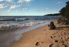 Lake Huron Landscape View Beautiful State of Michigan --- Continental Postcard