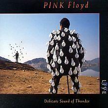 Delicate Sound of Thunder von Pink Floyd   CD   Zustand gut