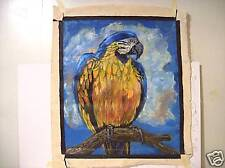 """""""PARROT""""  by RUTH  FREEMAN ACRYLIC ON UNSTRETCHED CANVAS 20"""" X 24"""""""