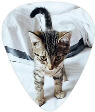 Guitar Picks Kitten Cat Kitty 4 pack