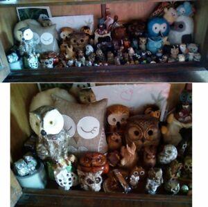 Collection De Chouettes