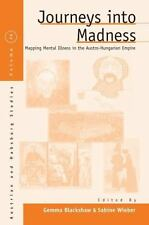 Journeys Into Madness: Mapping Mental Illness In The Austro-Hungarian Empire ...