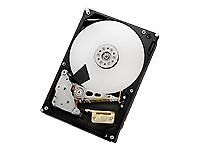 Dell Internal Hard Disk Drives 3TB Storage Capacity