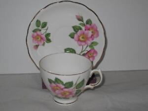 Royal Vale 6926 Teacup Cup & Saucer Set Pink Wild Roses