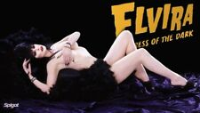 Hollywood Celebrity Art Photo Poster:  ELVIRA |21 inch by 36 inch| 07 80'S