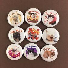 """Kingdom of Tigers 1"""" Button Pin Lot Set #2 Cute Kitten Cat"""