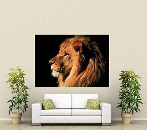 Lion Giant 1 Piece  Wall Art Poster AN112