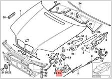 Pair TP Hood Gas Spring Shock 2x Struts Fits BMW E46 Coupe Sedan Wagon 8202688