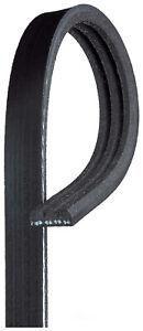 Serpentine Belt  ACDelco Professional  3K334