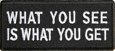 WHAT YOU SEE IS WHAT YOU GET - IRON or SEW ON PATCH