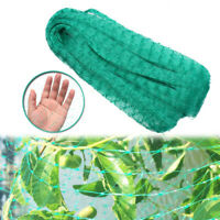 Anti Bird Net Bird-Preventing Netting Mesh for Fruit Crop Plant Tree Garden Home