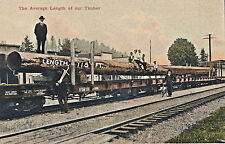 c1912 Huge 115' Logs on Railroad Train, Oregon Timber Tinted Postcard