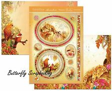 Enchanted Dreams Safari Card Making Kit Paper Crafting Hunkydory Dreams903 New