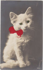Vintage Cat Postcard,White Kitten with Red Bow Attached,Shiny Eyes,c.1909