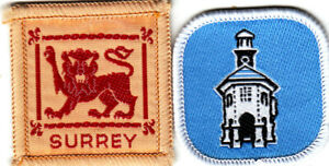 Boy Scout Badges SURREY County + Godalming District