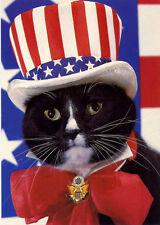 Cat Empire (Us Cat) 'Americat' Uncle Sam Black Cat Art by Weigall Postcard 4x6