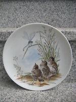 ASSIETTE MURALE PORCELAINE KAISER décor Oiseaux 19,5 cm