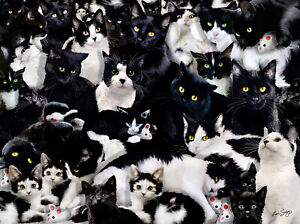 Jigsaw puzzle Animal Cat A Study in Black and White 1000 piece NEW Made in USA