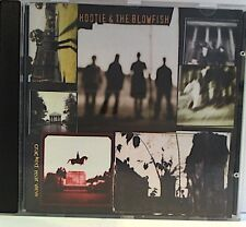 Hootie & The Blowfish -Cracked Rear View cd 11 tracks