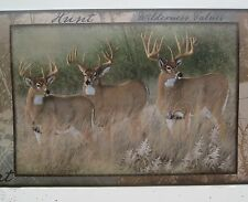 Deer Buck Doe Hunting Great Outdoors Wildlife Wallpaper Border 9""
