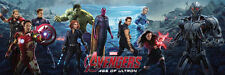 Movie POSTER Marvel The Avengers Age of Ultron all major heros 20x60 inch