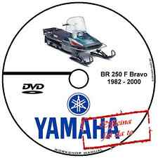 MANUALE OFFICINA YAMAHA BR 250 F BRAVO SNOWMOBILE GATTO WORKSHOP MANUAL CD DVD