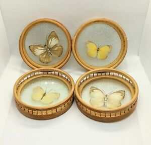 Vintage Set of 4 Pressed Butterfly Bamboo Wicker Coasters, MCM Boho Kitchen