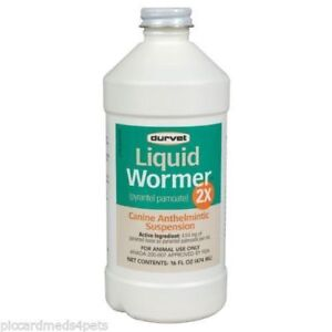 Durvet Liquid Wormer Pyrantel Pamoate Hookworms Round Worms Dogs Suspension 16oz