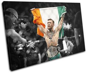 Conor McGregor UFC MMA Irish Flag Sports SINGLE CANVAS WALL ART Picture Print