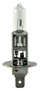 Headlight Bulb-4 Door Eiko 01003-BP